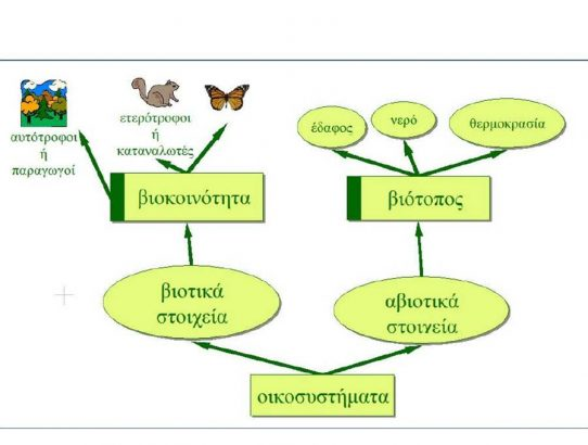 Ένα σενάριο διδακτικής παρέμβασης με αντικείμενο την έννοια των βιολογικών συστημάτων